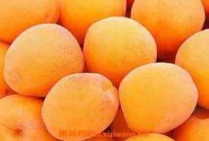 孕妇能吃杏吗 孕妇吃杏好不好